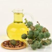 i51232-huile-de-ricin-composition-utilisation-bienfaits